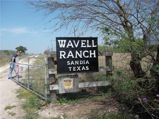 Cross Property - Sandia, TX