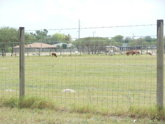 Detached - Corpus Christi, TX (photo 4)