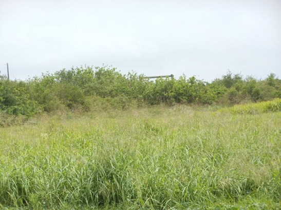 Cross Property - Corpus Christi, TX (photo 3)