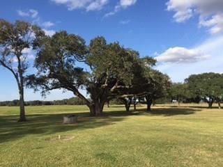 1728 Cr 362 Rd, El Campo, TX - USA (photo 4)