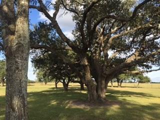 1728 Cr 362 Rd, El Campo, TX - USA (photo 5)