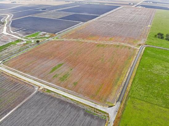 Country Homes/Acreage - Wallis, TX