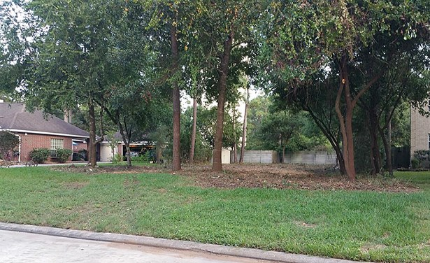 2215 Deer Cove Trl, Kingwood, TX - USA (photo 4)