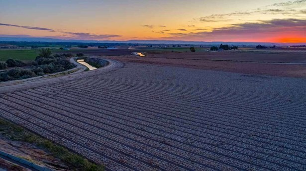 Farm - Parma, ID