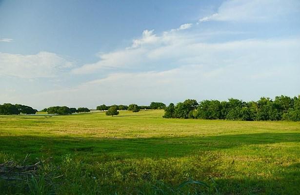 0 Dill Hill Lane - Tract 3, Washington, TX - USA (photo 3)