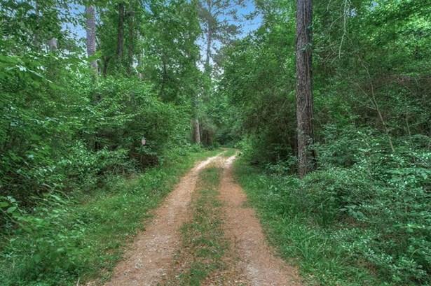 15 Riata, Magnolia, TX - USA (photo 5)