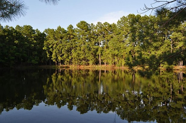 0000 Fm 153, La Grange, TX - USA (photo 1)