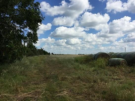 5203 Fm 2502, Bleiblerville, TX - USA (photo 4)