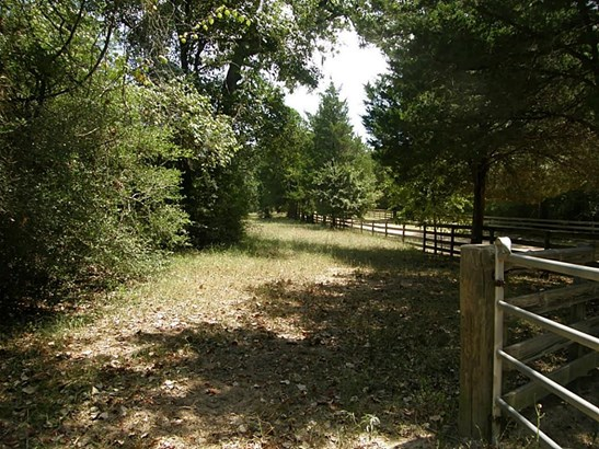 22699c Lesiker, New Ulm, TX - USA (photo 3)