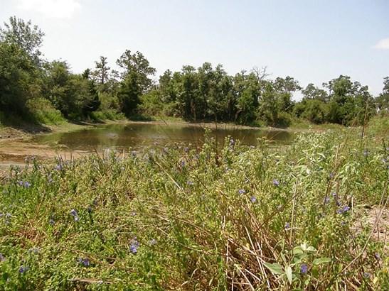 0 Halamicek Loop, Fayetteville, TX - USA (photo 4)