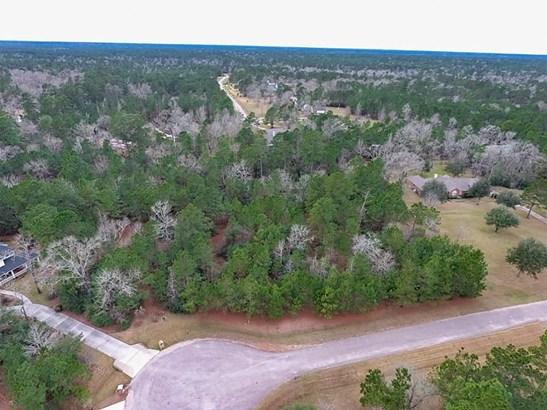 36731 Deer Valley, Magnolia, TX - USA (photo 1)