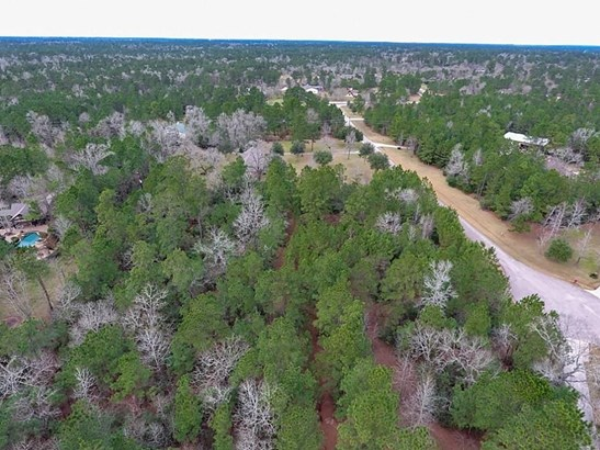 36731 Deer Valley, Magnolia, TX - USA (photo 2)