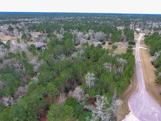36731 Deer Valley, Magnolia, TX - USA (photo 3)