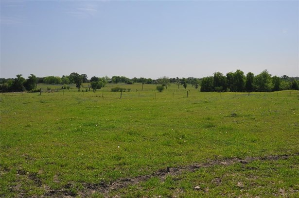 5401 Trackside, Chappell Hill, TX - USA (photo 3)