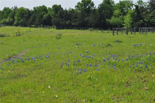 5401 Trackside, Chappell Hill, TX - USA (photo 5)