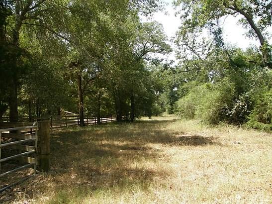 22699c Lesiker, New Ulm, TX - USA (photo 4)