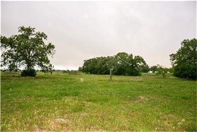 0000 Waldeck Cemetery, Round Top, TX - USA (photo 1)