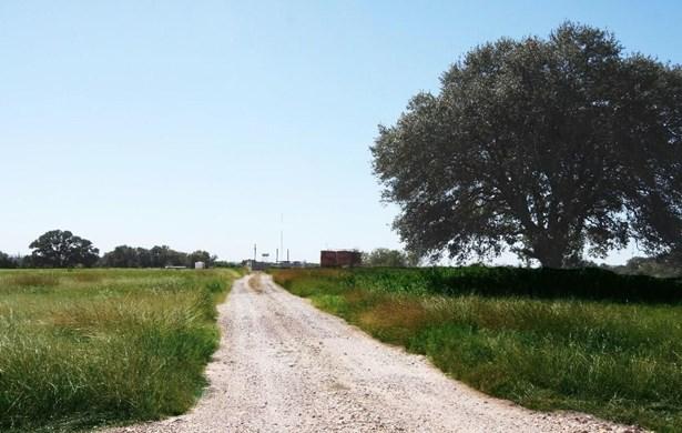 000 Mueller/cottonwood, La Grange, TX - USA (photo 3)