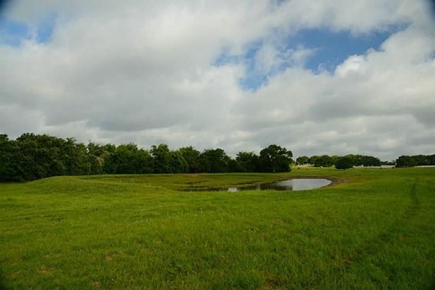 0 Fm 912 - Tract 2, Washington, TX - USA (photo 5)