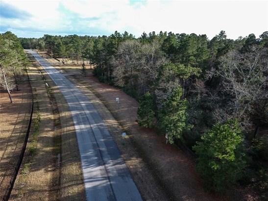 28152 Forest Green, Magnolia, TX - USA (photo 5)