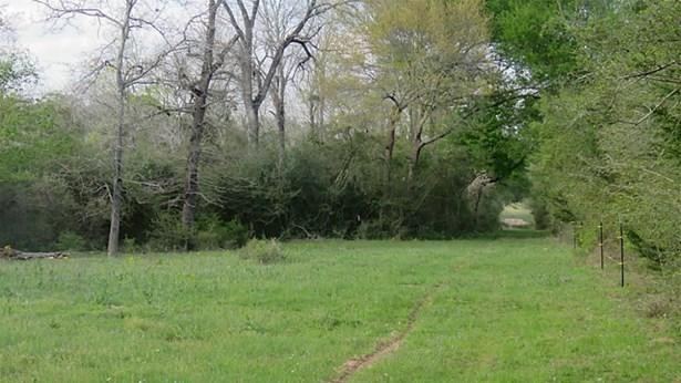 15324 Sycamore, Bellville, TX - USA (photo 3)