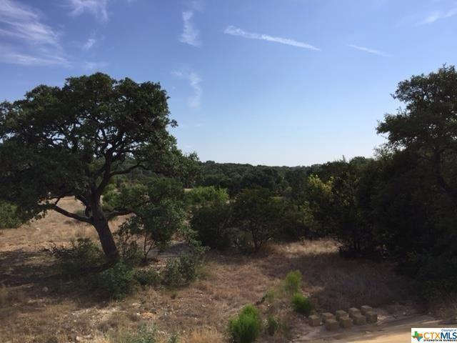 5754 Keller, Canyon Lake, TX - USA (photo 3)
