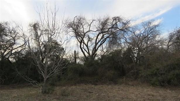 11064 Swearingen, Sealy, TX - USA (photo 5)