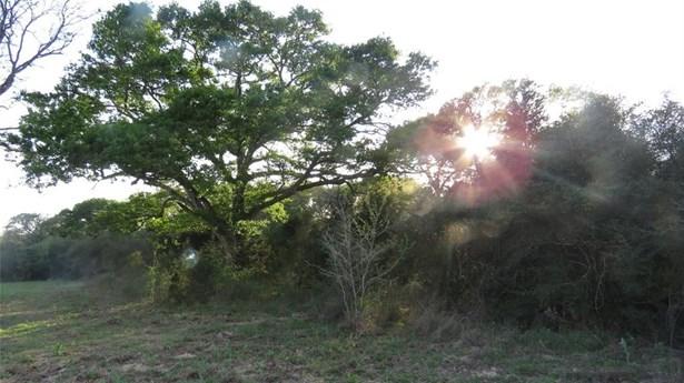 15324 Sycamore, Cat Spring, TX - USA (photo 4)
