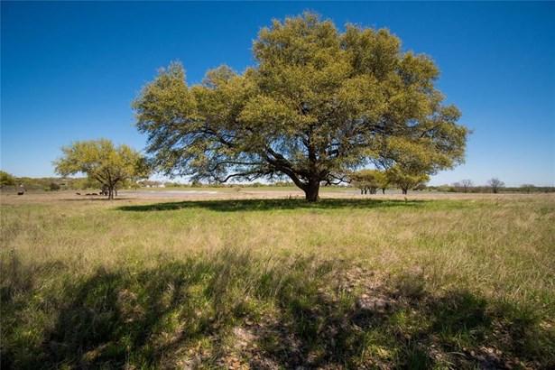 0 Fm 390, Brenham, TX - USA (photo 2)