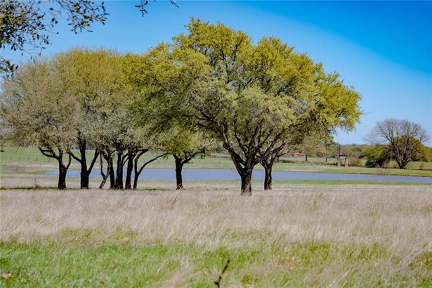 0 Fm 390, Brenham, TX - USA (photo 3)