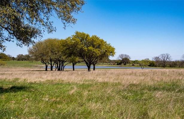 0 Fm 390, Brenham, TX - USA (photo 4)