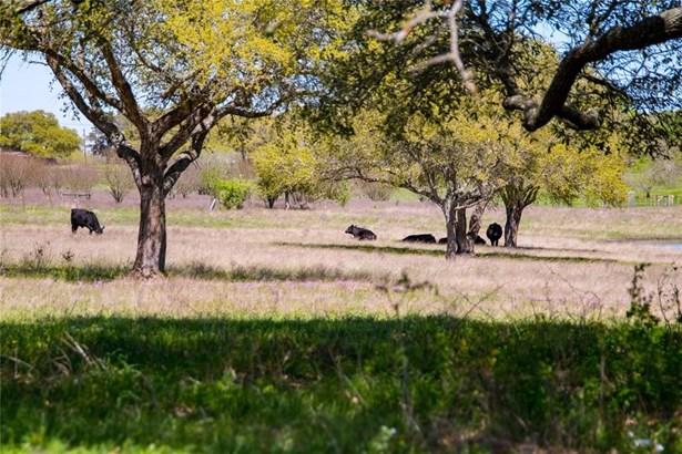 0 Fm 390, Brenham, TX - USA (photo 5)