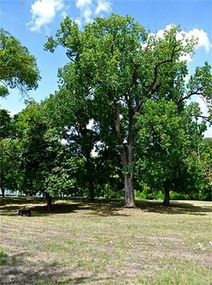 114 Shoreline, Bastrop, TX - USA (photo 5)