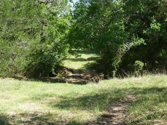 000 Nelson Lane, Cat Spring, TX - USA (photo 4)