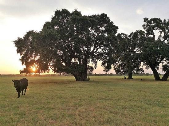 6702 Mullins, La Grange, TX - USA (photo 1)
