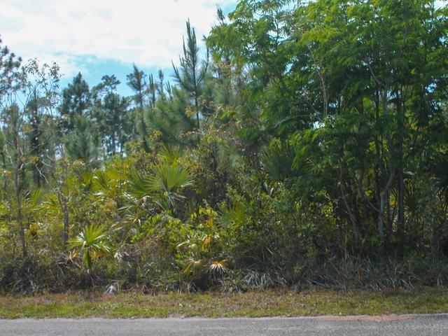 36 Bombard Close, Grand Bahama/freeport - BHS (photo 3)