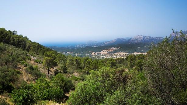 Son Font - Calvia, Mallorca, Balearic Islands - ESP (photo 1)