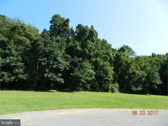 Land - BARNESVILLE, PA (photo 2)