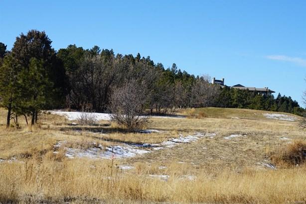 6713 Handies Peak Court, Castle Rock, CO - USA (photo 5)