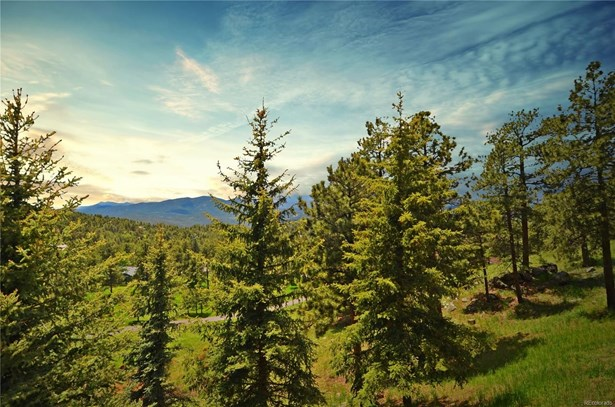 1315 Lupine Way, Golden, CO - USA (photo 4)