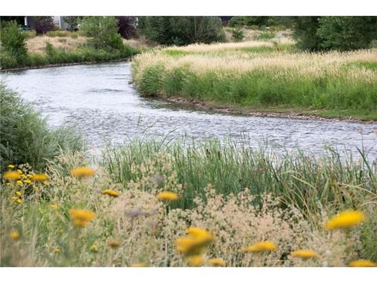 5029 South Platte River Parkway, Littleton, CO - USA (photo 3)