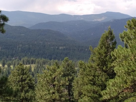5091 Liberty Drive, Evergreen, CO - USA (photo 2)