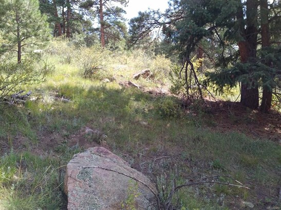 5091 Liberty Drive, Evergreen, CO - USA (photo 3)