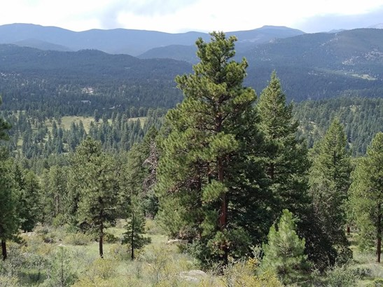 5091 Liberty Drive, Evergreen, CO - USA (photo 4)