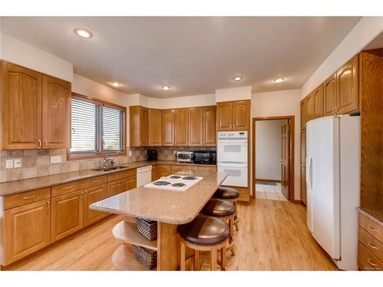 9877 Isabel Court, Highlands Ranch, CO - USA (photo 4)