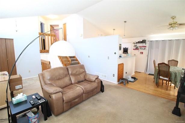 48 Quicksilver Avenue, Castle Rock, CO - USA (photo 4)