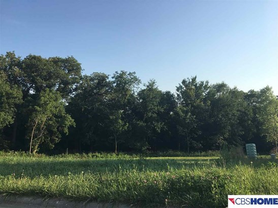 Residential - Louisville, NE (photo 4)