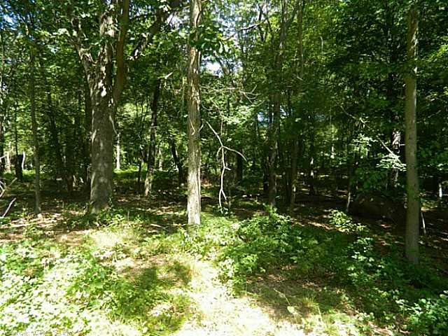 Residential Land - Old Lyme, CT (photo 2)