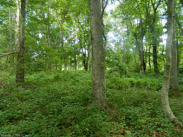 Residential Land - Old Lyme, CT (photo 1)