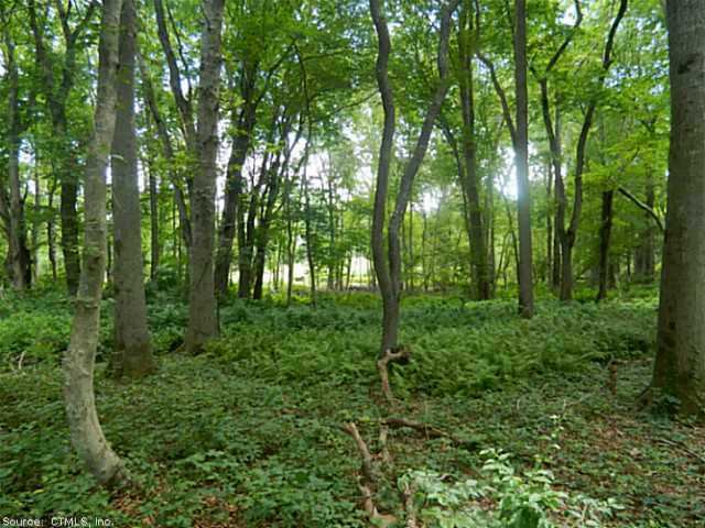 Lots and Vacant Land - Old Lyme, CT (photo 3)